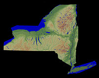 200px-New_York_Relief_1-EDIT